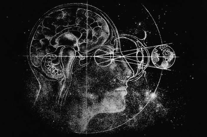 Bolcmanov mozak
